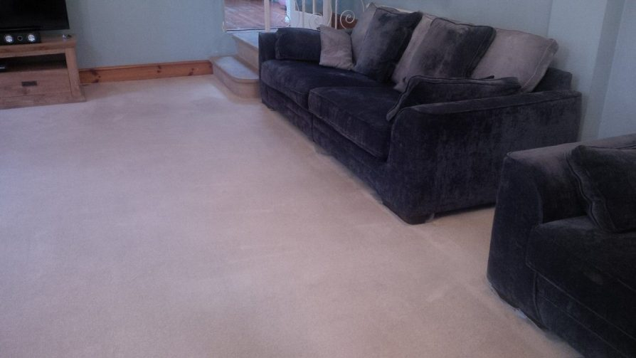 carpets cleaned by SJS carpet cleaning Leicester